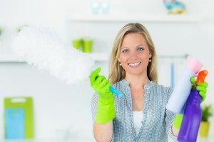 Pulizie domestiche casa colf impresa pulizie monza for Tutto per la casa shop online